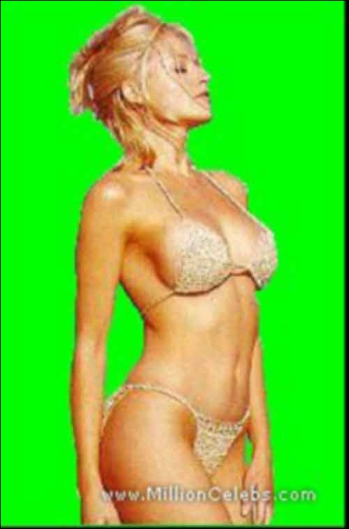 daniela ruah nude fakes