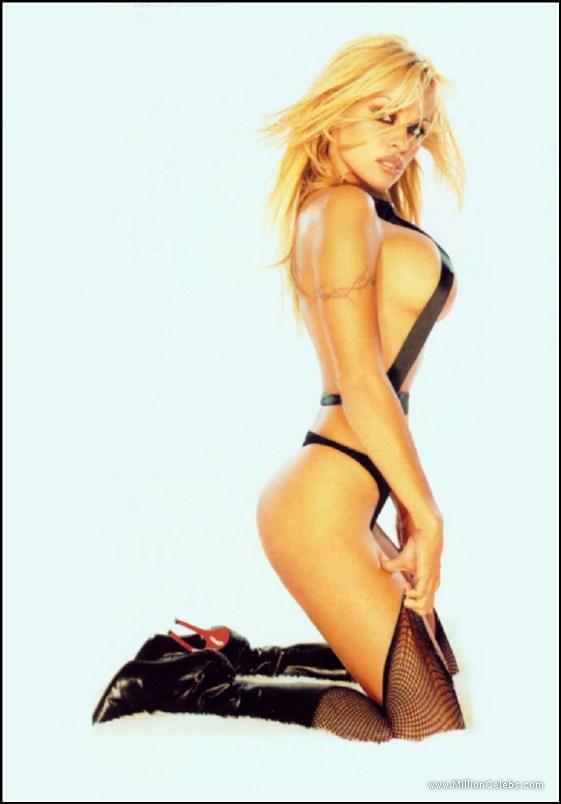 Pamela anderson free nude videos
