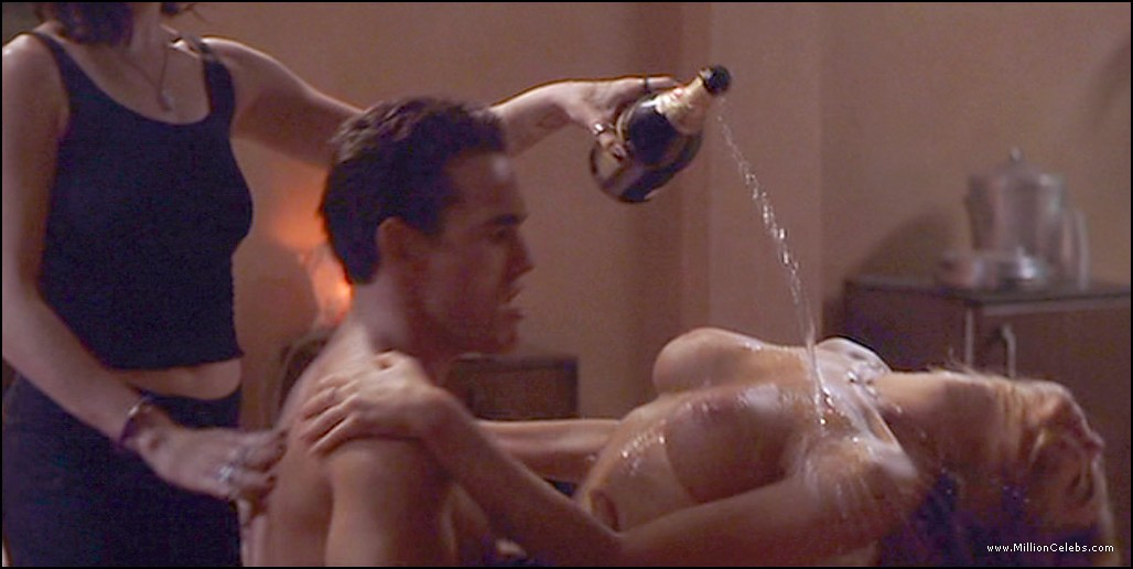 Nude sex scene of denise richards that
